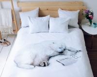 Realistischer Eisbär auf Bettwäsche