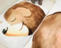 Bettwäsche mit Bärchen aus zertifizierter Baumwolle für Kinder