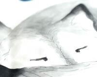 Bettwäsche mit Wolf Aufdruck Hayka