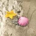 Strandurlaub Bettwäsche Meer Baumwolle Hayka von Foonka